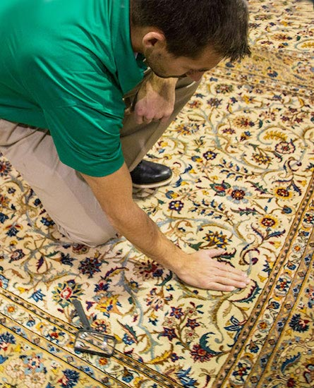 Professional Area and Oriental Rug Cleaning by Absolute Chem-Dry